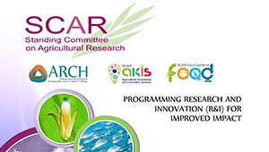 Programming Research and Innovation for Improved Impact