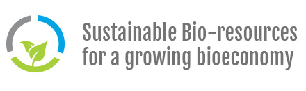 Logo BIOECONOMY STRATEGIC WORKING GROUP